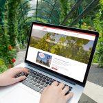 WordPress und WooCommerce aus Berlin direkt von den Experten - medienvirus.de – Sailers